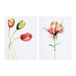 EDELVIK poster, set of 2, Tulips and rose
