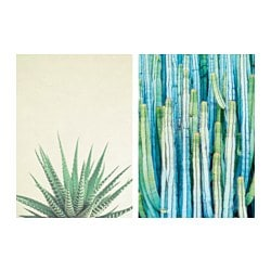 TVILLING poster, set of 2, Prickly greenery