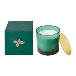 NJUTNING scented candle in glass, Minty leaves, dark green