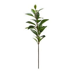 SMYCKA artificial flower, Ruscus, green