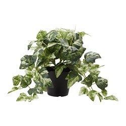 FEJKA artificial potted plant, Ivy