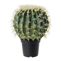 FEJKA artificial potted plant, cactus, ball shape