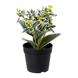 FEJKA artificial potted plant, Variegated spurge