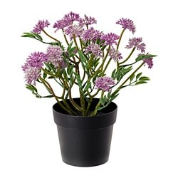 FEJKA artificial potted plant, clover