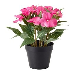 FEJKA artificial potted plant, Touch-me-not pink