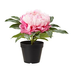 FEJKA artificial potted plant, Peony pink