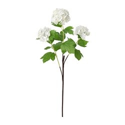 SMYCKA artificial flower, snowball, white