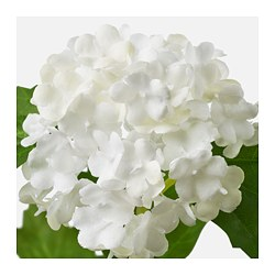 Smycka artificial flower ikea smycka artificial flower snowball white mightylinksfo