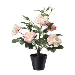 FEJKA artificial potted plant, in/outdoor, Rose pink