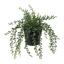 FEJKA, Artificial potted plant, indoor/outdoor String of beads