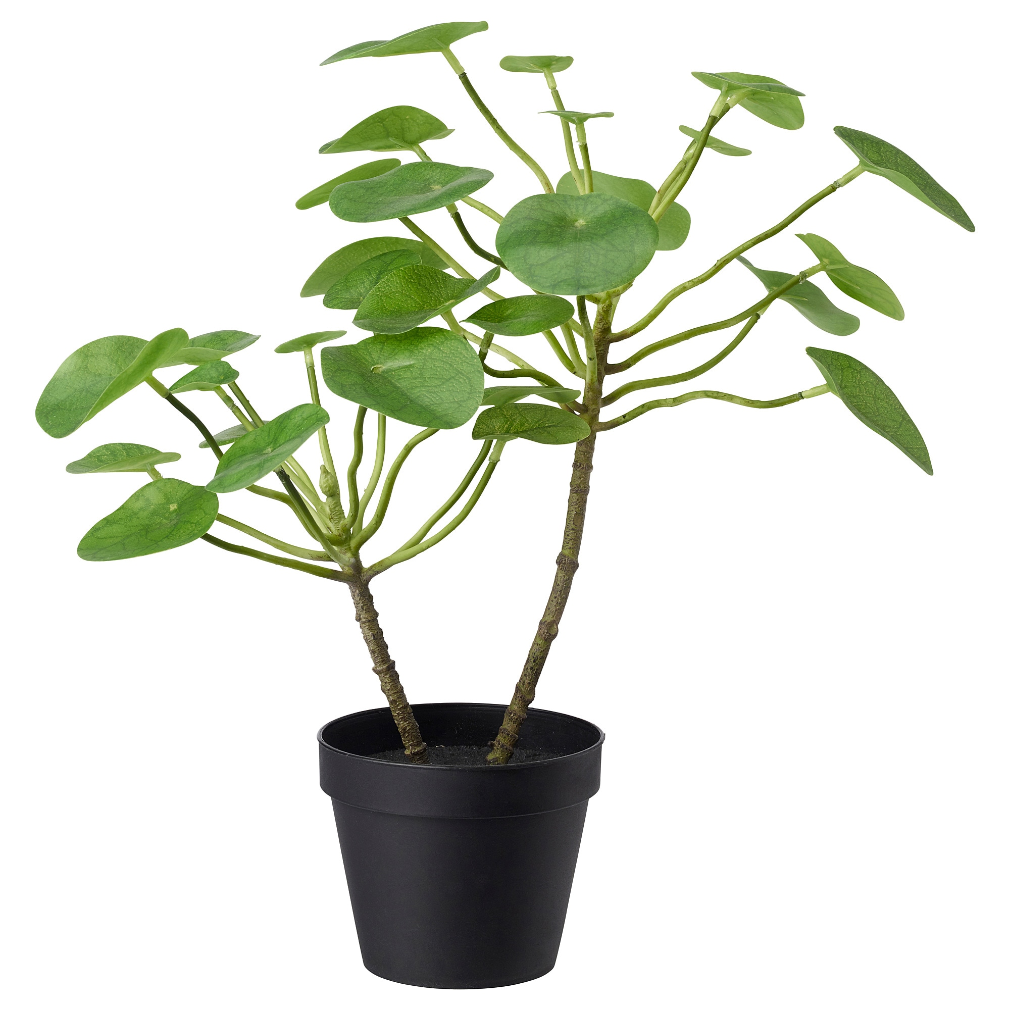 Fejka Artificial Potted Plant Indoor Outdoor Pilea