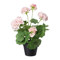 FEJKA artificial potted plant, in/outdoor, Geranium pink