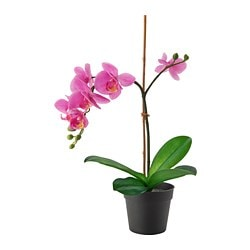 FEJKA artificial potted plant, Orchid lilac