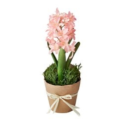 FEJKA artificial potted plant, Hyacinth pink