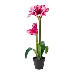 FEJKA artificial potted plant, Amaryllis pink