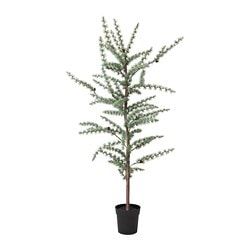 FEJKA artificial potted plant, in/outdoor larch