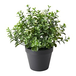 FEJKA artificial potted plant, in/outdoor Lingonberry