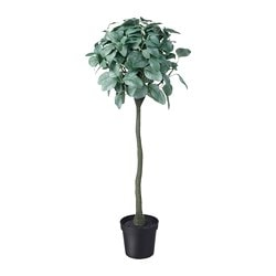 FEJKA artificial potted plant, indoor/outdoor, eucalyptus stem