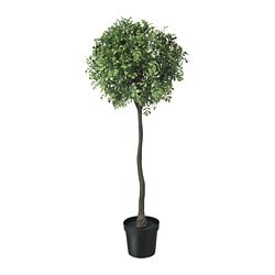 FEJKA artificial potted plant, indoor/outdoor, box stem
