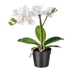FEJKA artificial potted plant, Orchid white
