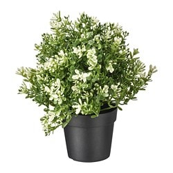 FEJKA artificial potted plant, thyme