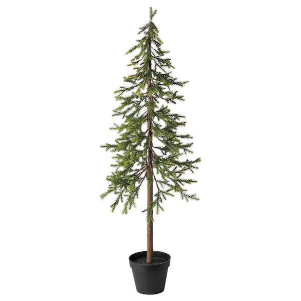 Christmas Tree Pictures.Artificial Potted Plant Vinterfest Indoor Outdoor Christmas Tree Spruce
