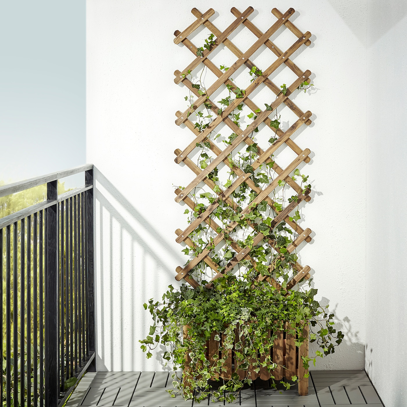 ASKHOLMEN Trellis - light brown stained