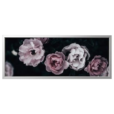 BJÖRKSTA Picture with frame, pink petals/aluminium-colour, 140x56 cm