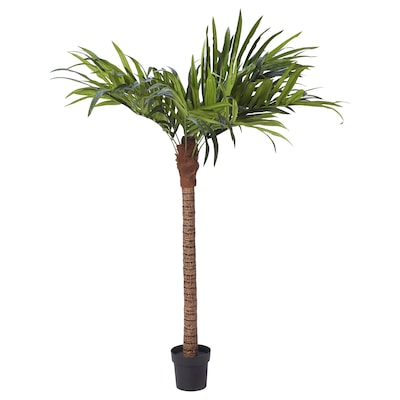 FEJKA Artificial potted plant, in/outdoor/palm, 21 cm