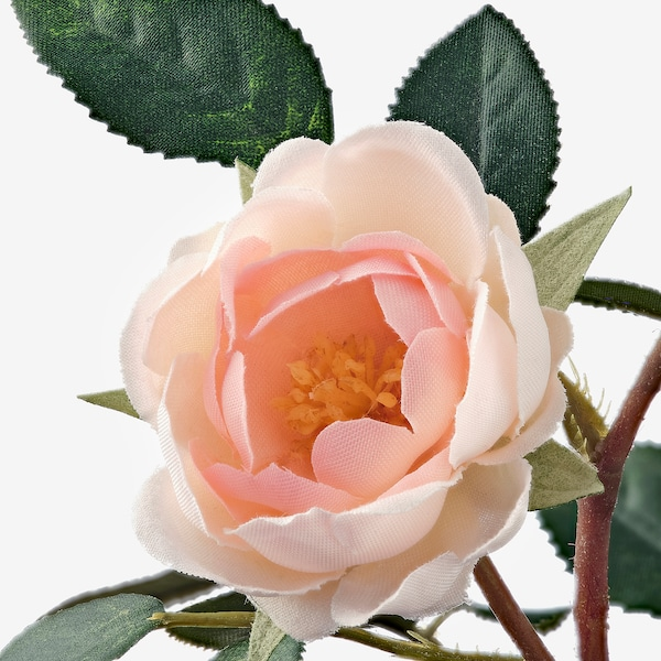 FEJKA Artificial potted plant, in/outdoor/Rose pink, 9 cm