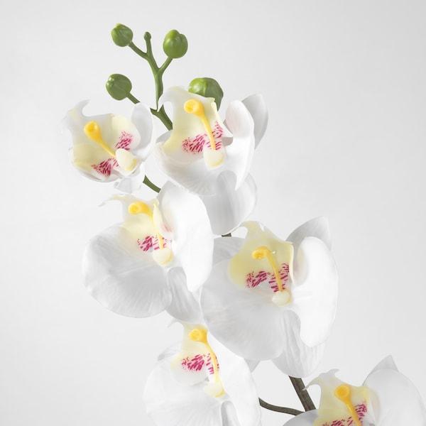 SMYCKA زهرة صناعية, أوركيد/أبيض, 60 سم