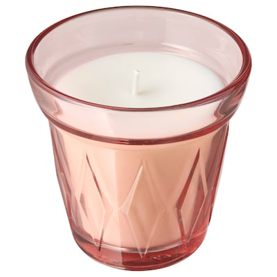 VÄLDOFT Scented candle in glass, wild strawberry/dark pink, 8 cm