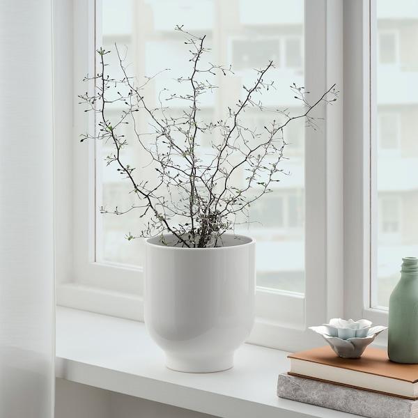 DRÖMSK Übertopf, weiß, 15 cm