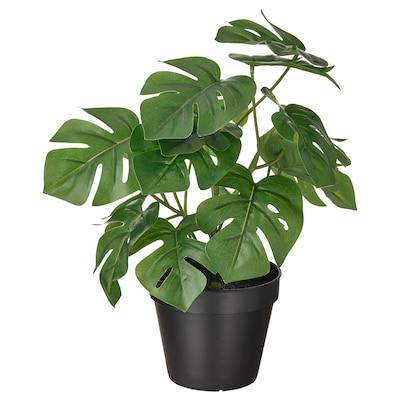 FEJKA Topfpflanze, künstlich, drinnen/draußen Monstera, 12 cm
