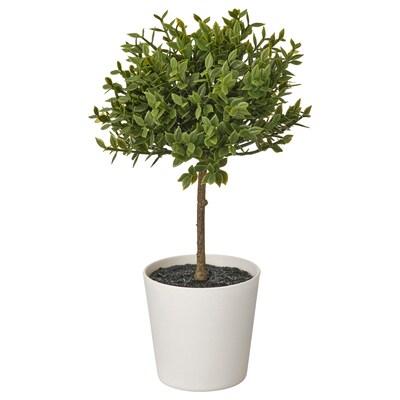 FEJKA Topfpflanze, künstlich/mit Topf, drinnen/draußen Myrte, 6 cm