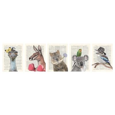 BILD Poster, animals, 30x40 cm