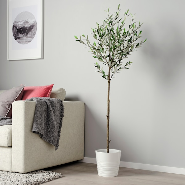 FEJKA Artificial potted plant, in/outdoor Olive tree, 19 cm