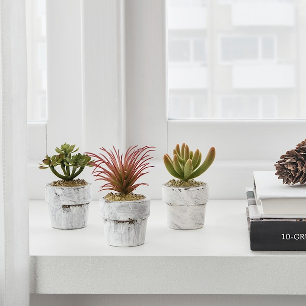 FEJKA Artificial potted plant with pot, in/outdoor Succulent, 4 cm