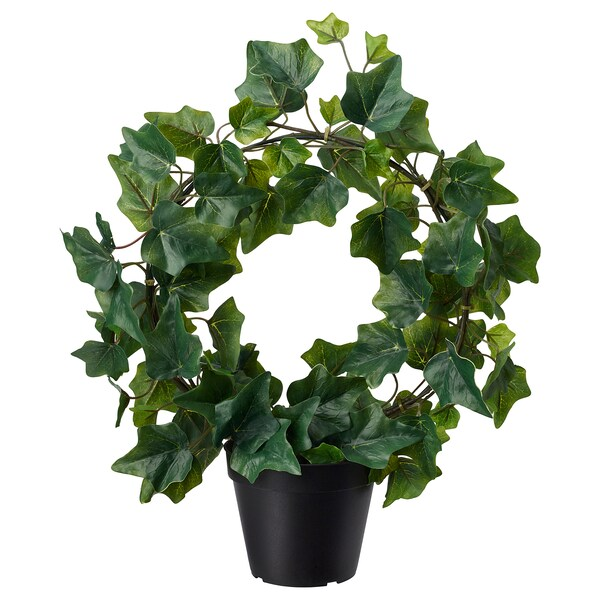 FEJKA artificial potted plant in/outdoor/Ivy bow 12 cm 40 cm