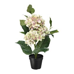 FEJKA artificial potted plant, in/outdoor, Hydrangea green