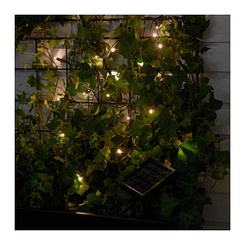 solarvet led lighting chain with 24 lights ikea