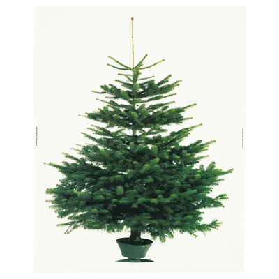 VINTER 2020 Pre-cut fabric, Christmas tree white/green, 150x220 cm