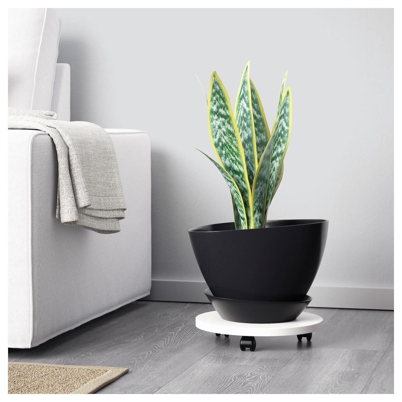 bigarr pot avec coupelle int rieur ext rieur noir 21 cm ikea. Black Bedroom Furniture Sets. Home Design Ideas