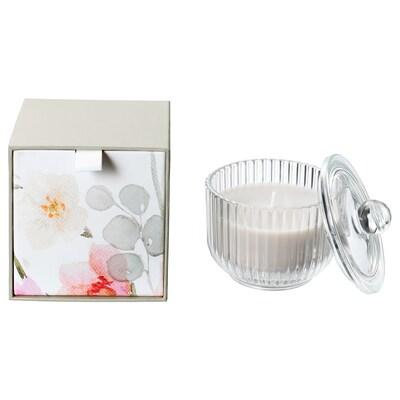 BLOMDOFT Bougie parfumée dans verre, glaïeul/gris, 9 cm