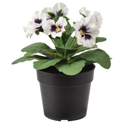 FEJKA plante artificielle en pot intérieur/extérieur Pensée/blanc 9 cm 16 cm