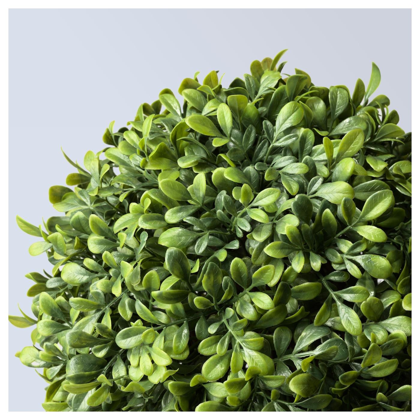Fejka plante artificielle en pot int rieur ext rieur buis for Fushia plante interieur ou exterieur