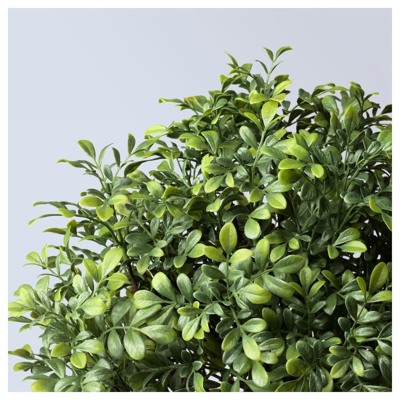 fejka plante artificielle en pot int rieur ext rieur buis. Black Bedroom Furniture Sets. Home Design Ideas