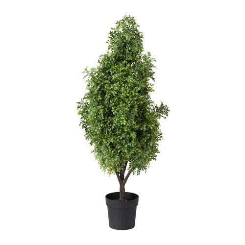 Fejka plante artificielle en pot int rieur ext rieur buis - Plante artificielle exterieur ikea ...