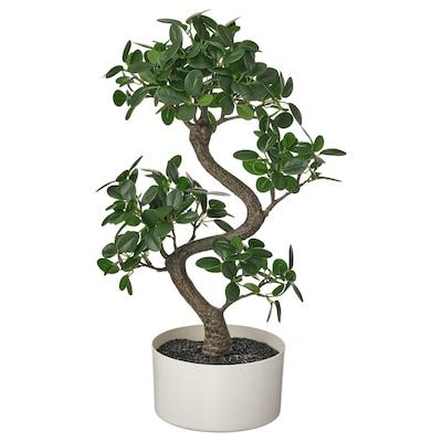 FEJKA Plante artificielle en pot, intérieur/extérieur bonsaï, 16 cm