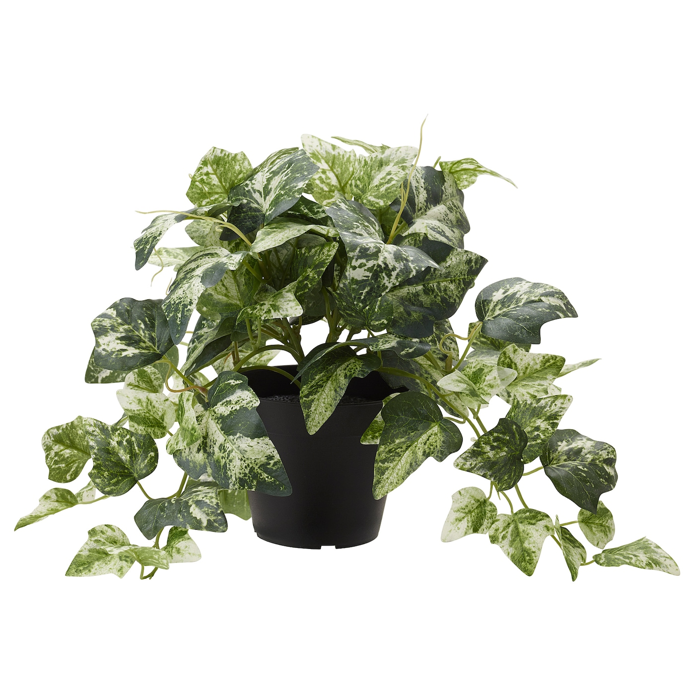 Fejka plante artificielle en pot lierre 12 cm ikea for Plante verte artificielle ikea